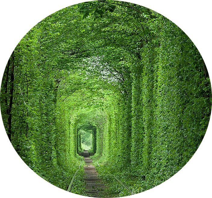 25 tunel kolo